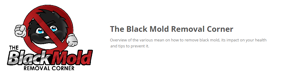 The Black Mold Removal Corner